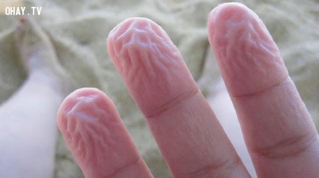 Nếp nhăn ở tay.,cơ thể con người,cơ chế phòng vệ
