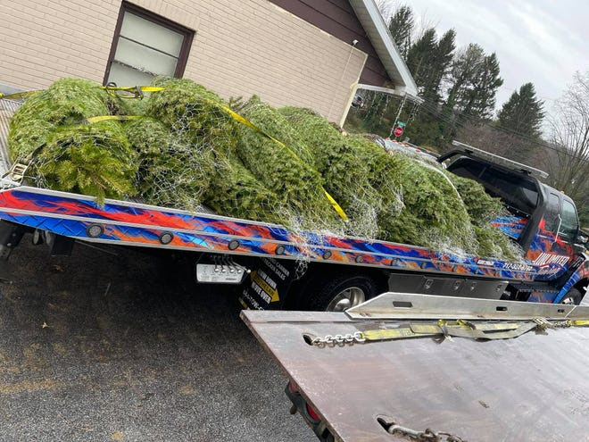 Christmas trees purchased for those in need