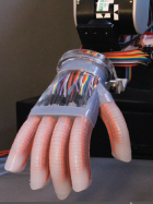 Soft robotic hand mounted on a robotic arm (credit: Cornell University)