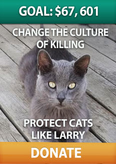 Change the culture of killing. Protect cats like Larry. Dona
