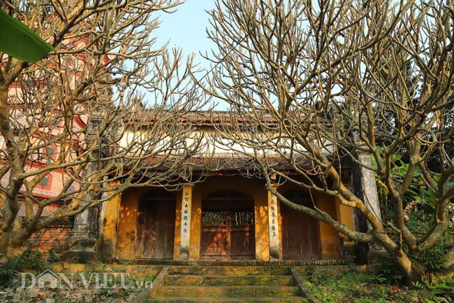 Bí ẩn ngôi chùa không có hòm công đức và nhục thân Thiền sư 300 năm không phân hủy ở Bắc Ninh - 11