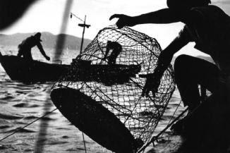 Minamata_fishing