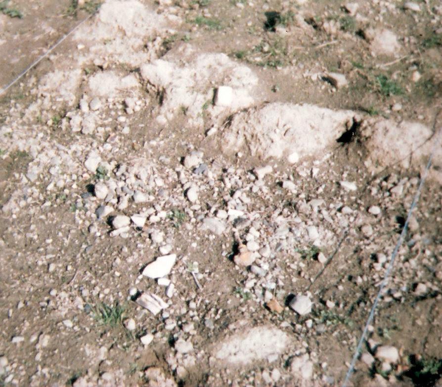 My 'soil' 35 years ago