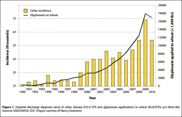 celiac incidence as a factor of glyphosate application to wheat