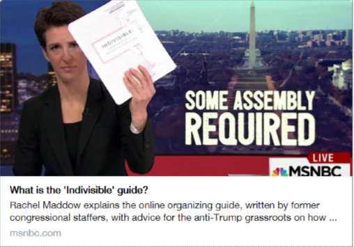 Rachel Maddow: What is the 'Indivisible' Guide?
