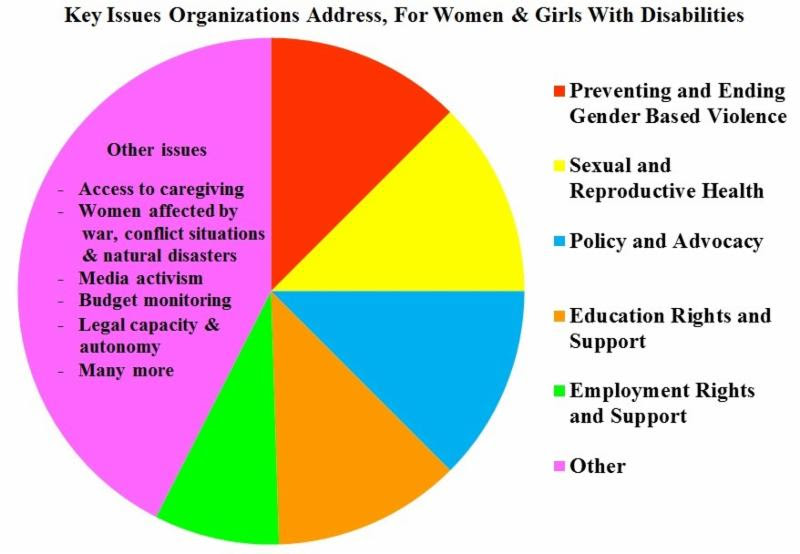 Key issues organizations address_ for women and girls with disabilities. Pie chart indicates about one-eighths of respondents address Preventing and ending gender based violence_ another one eight on sexual and reproductive health_ another eighth on policy and advocacy_ another eigth on education rights and support_ a smaller segment on employment rights and support. The rest is focused on a wide range of other issues including access to caregiving_ women affected by war_ conflict situations and natural disasters_ media activism_ budget monitoring_ legal capacity and autonomy_ and many more