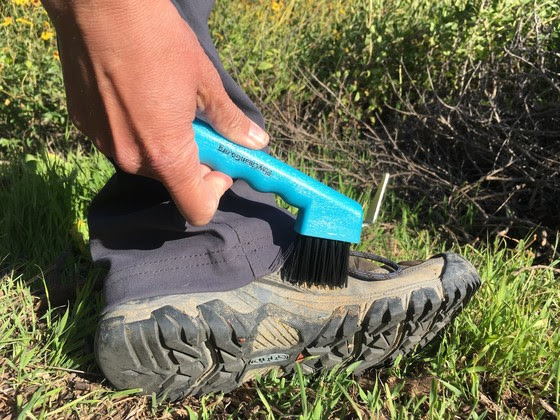 A hand brushing mud from boots with a brush