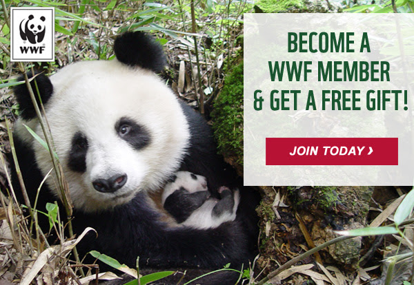 Become a WWF member and get a free gift!