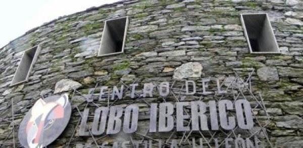 Centro del Lobo Ibérico de Castilla y León en Robledo, en Puebla de Sanabria -Zamora