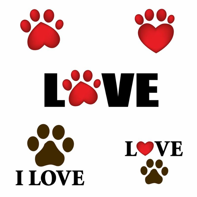 Paw prints with I love text. Animal lover design with heart shaped paws