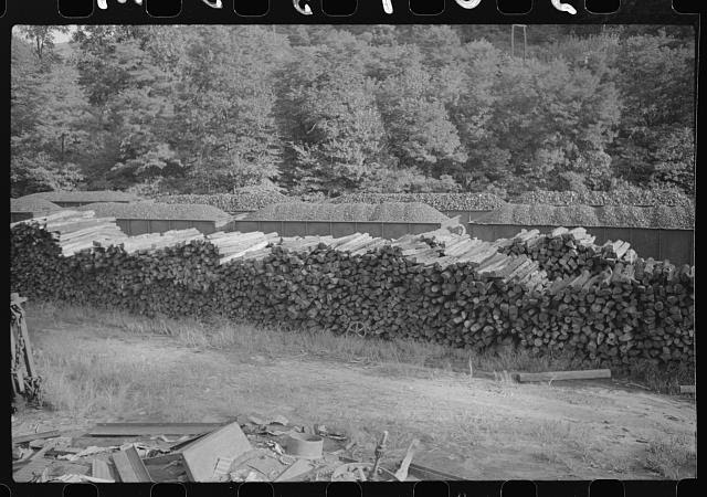 Wood pile for use in mine and coal cars, Scotts Run, West Virginia
