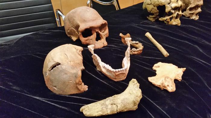 L'Homo sapiens serait 100000 ans plus vieux que ce que l'on croyait et son berceau n'est peut-être pas l'Afrique de l'est