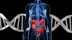 a body with the colon highlighted and DNA in the background