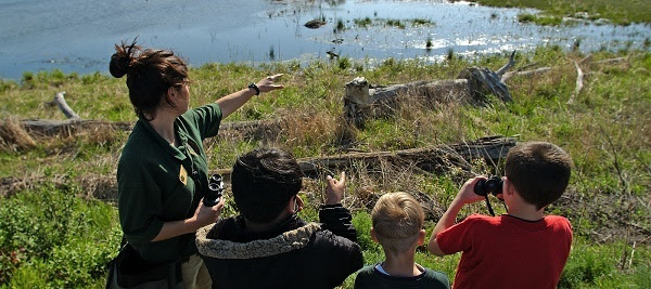 A female DNR employee shows kids using binoculars where to look on a wetland area, sun reflecting off the water