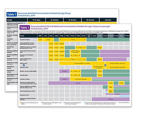 2019 immunization schedules
