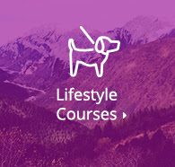 Browse Lifestyle Courses