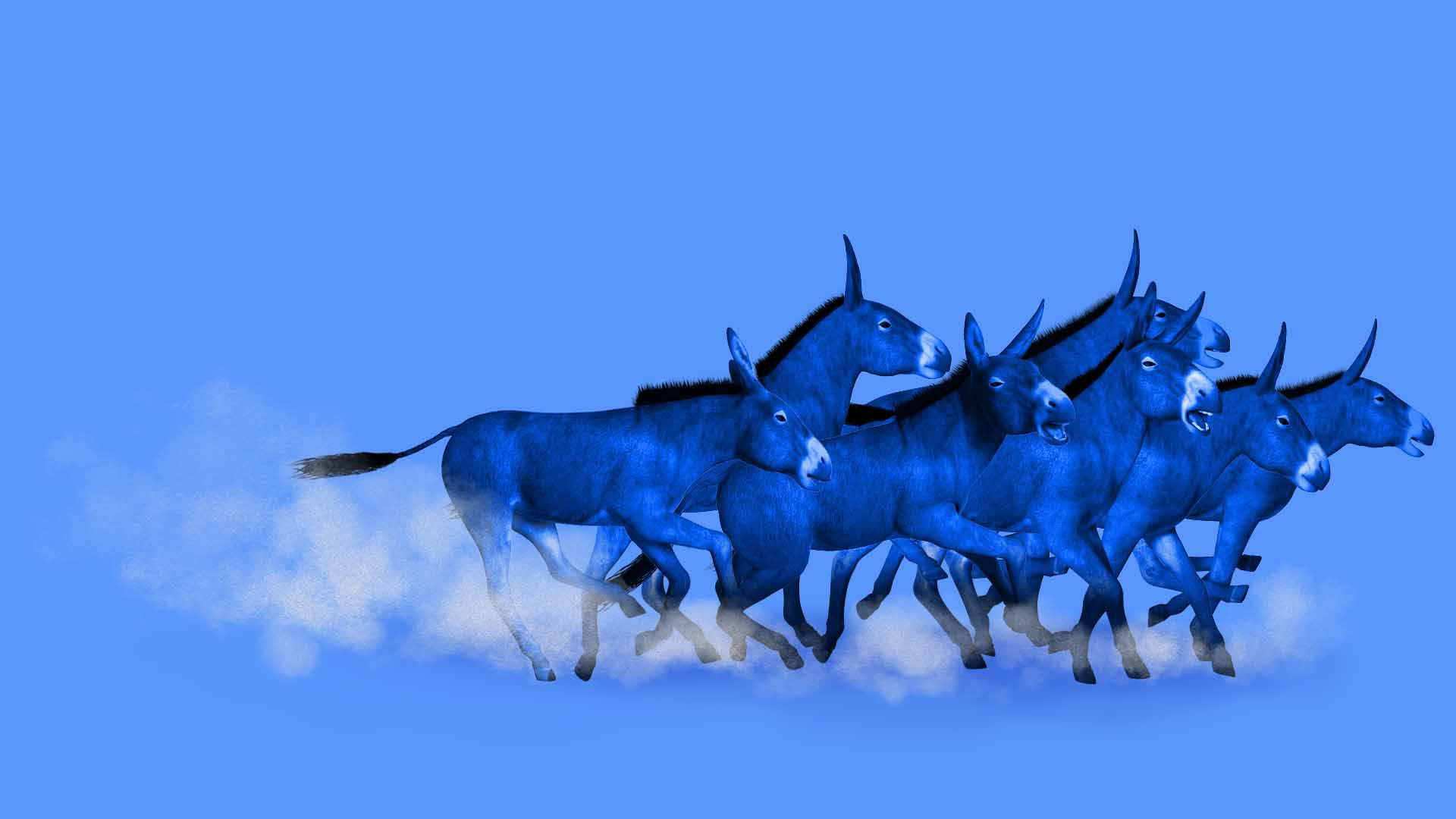 Illustration of a pack of donkeys at a race