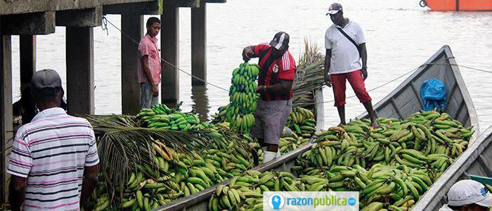 Sectores de producción, venta y distribución de alimentos