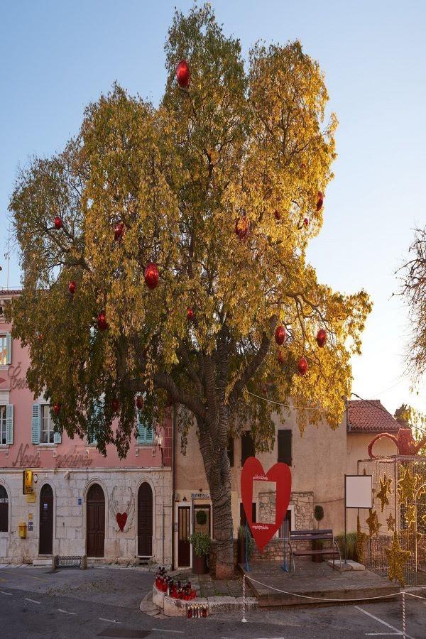 La ortiga de Medulin, provincia de Istria en Croacia reúne a los habitantes en invierno como en verano desde hace 115 años.