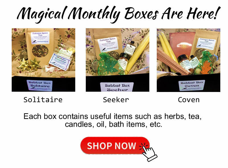 Click here to check out our September Magical Monthly Box
