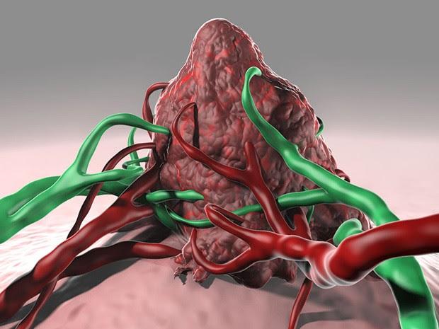 Vacinas criadas por pesquisadores aumentaram a resposta das células T dos pacientes a certas mutações do câncer de pele  (Foto: C. Bickel/Science)