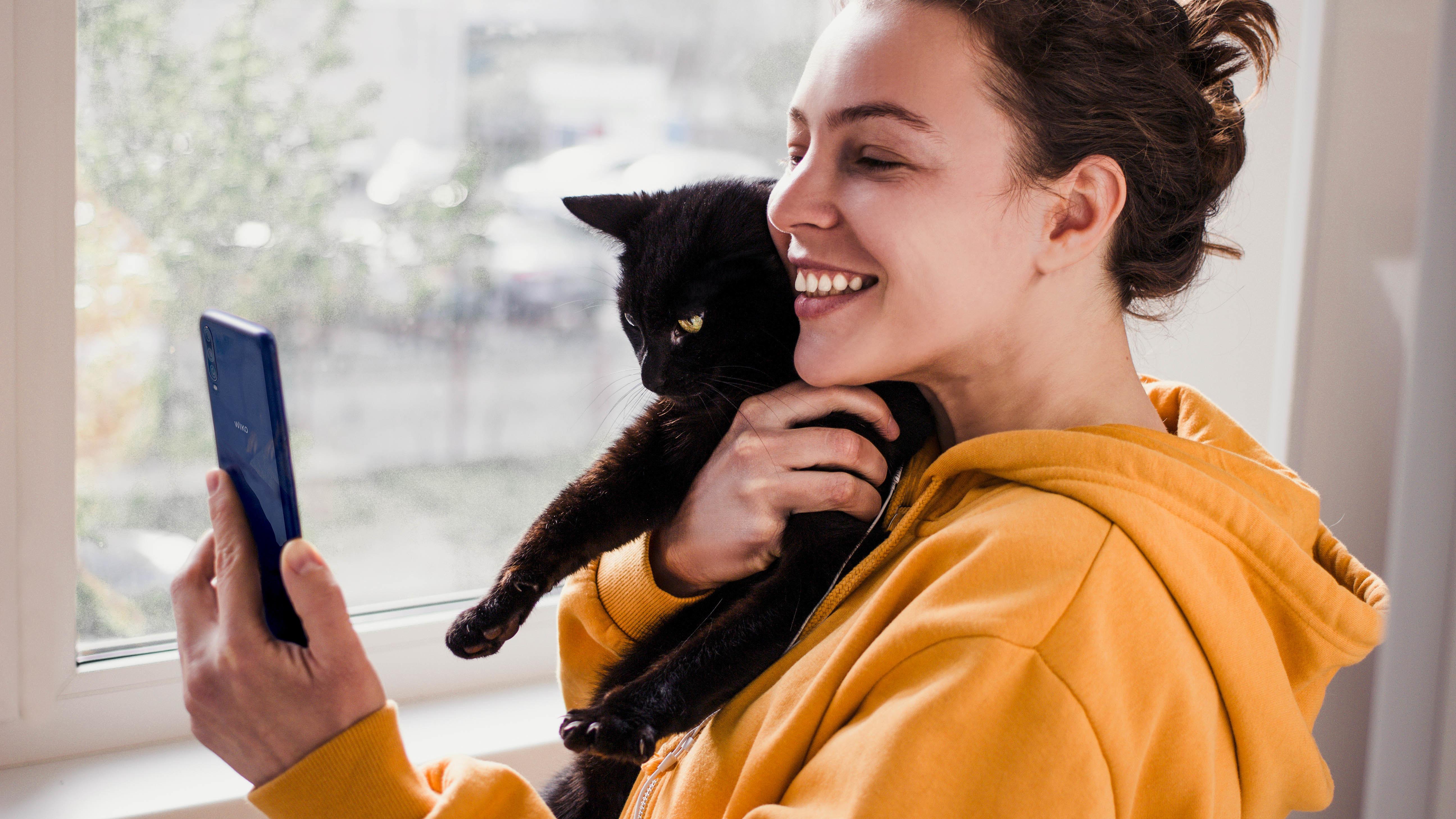 WIKO ensina-te como tirar as melhores fotografias ao teu gato!