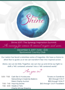 2017 SHINE DIGITAL FLYER