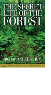 The Secret Life of the Forest by Richard M. Ketchum