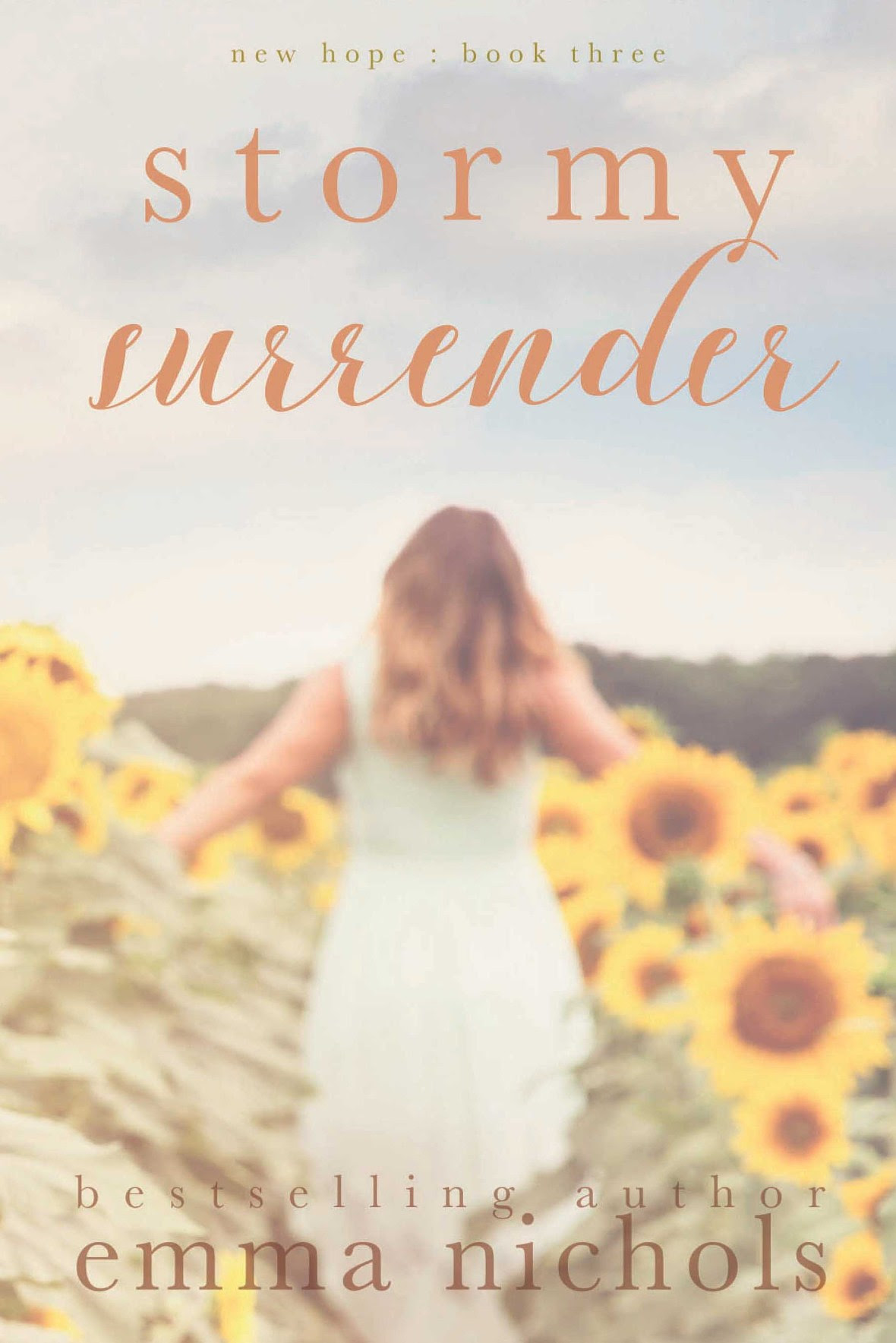 Stormy Surrender ebook