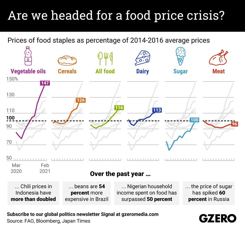 A graph showing prices of food staples as a percentage of 2014-2016 average prices; vegetable oils have increased 147% as of February 2021, cereals 126%, dairy 113%, sugar 100%, and meat 96%. Overall, all food prices are up 116%.