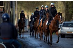 Racehorses head out for training at Upper Lambourn