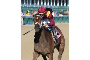 Answer In is among favorites in a field of nine drawn in the Southwest Stakes at Oaklawn Park
