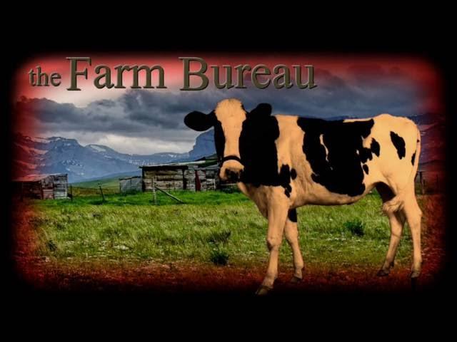 Bad-clown Rising ~ the Farm Bureau MORE NOISE  Sddefault