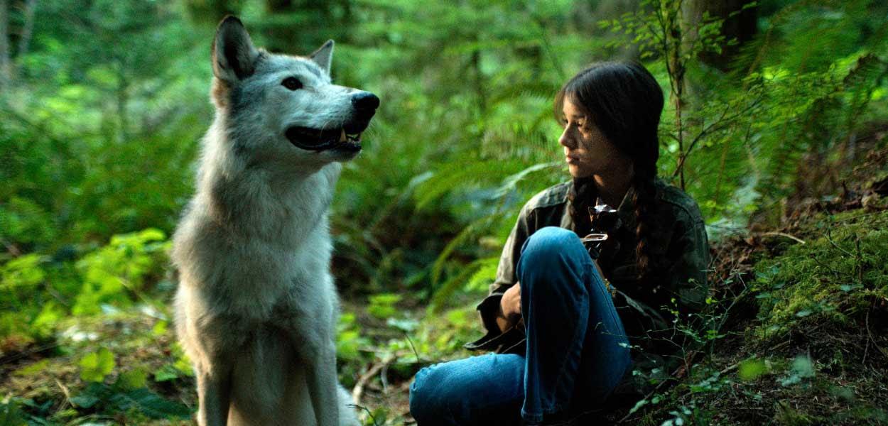 Αποτέλεσμα εικόνας για Shana – The wolf's Music