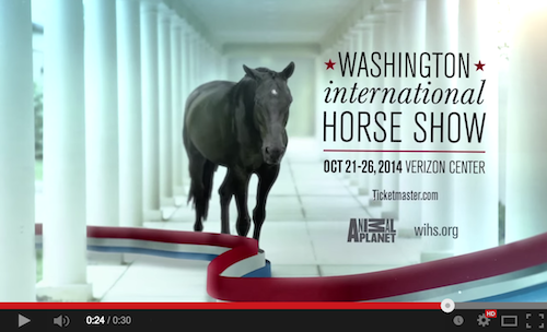 Click here to watch the fantastic promotional video for this year's Washington International Horse Show!