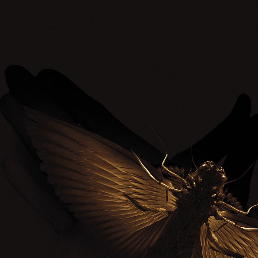 WEB-chrysalide-personal revolution promo-9