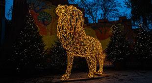 Christmas at London Zoo