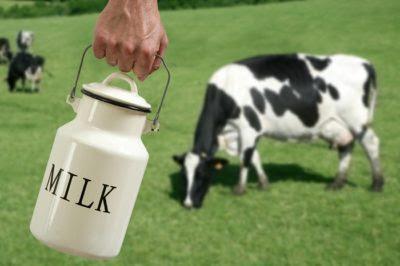 How To Handle Raw Milk … And Even Make It Last Longer Milk-dairyreporterDOTcom-400x266