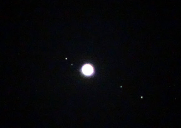 View Larger. Photo of Jupiter's moons by Carl Galloway. Thank you Carl! The four major moons of Jupiter - Io, Europa, Ganymede and Callisto - are easily seen through a low-powered telescope. Click here for a chart of Jupiter's moons