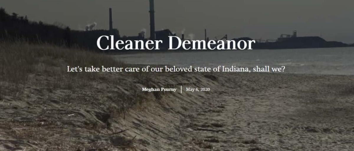 CleanerDemeaner2020.jpg