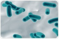 Researchers find evidence of epigenetics in single-celled archaea