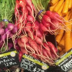organic radishes and carrots