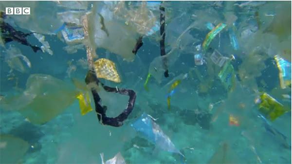 Медицинские отходы в океане