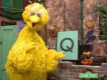 big bird q