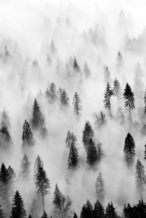 "Alexander Gagin/Yosef - ""Galactic Fog""   10/17/17 Image"