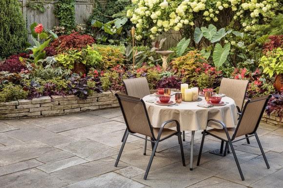 Tropical backyard dining