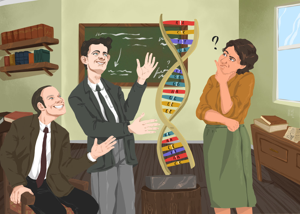 Em uma sala com uma lousa com anotações ao fundo, dois cientistas homens com ternos dos anos 50 apontam sorridentes para um modelo de DNA com pares de bases iguais (AA, TT, CC, GG), uma terceira cientista, de saia verde e blusa marrom, observa com a mão no queixo e um ponto de interrogação pairando sobre sua cabeça.