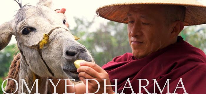 photo by Pawo Choyning Dorji