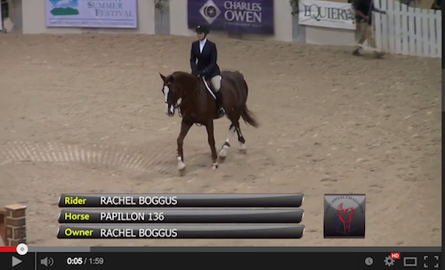 Watch the winning round from Rachel Boggus and Papillon 136.