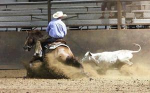 Justin Stanton of Stanton Performance Horses, TX
